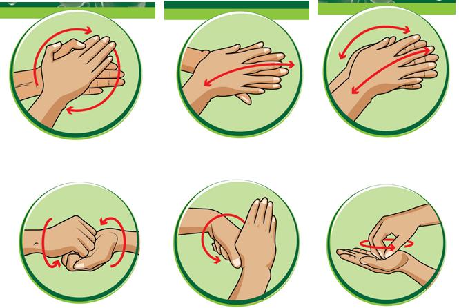 6 bước rửa tay thường quy
